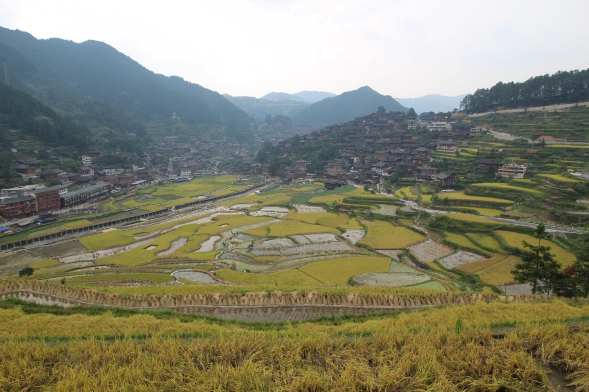 西江千戸苗村